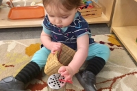May News from the Toddler Community